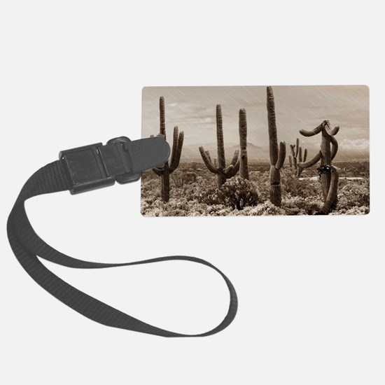 Stormy Winter in the Desert Luggage Tag
