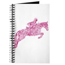 Doodle Horse Show Jumping Illustration Pin Journal