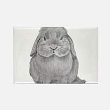Holland Lop by Karla Hetzler Magnets