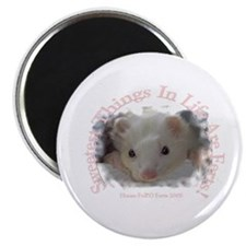 """Sweetest Things in Life....2.25"""" Magnet (10 pack)"""
