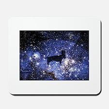 Wirehair dachshund jumping stars galaxy dream Mous