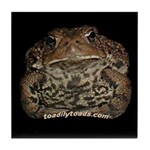 Matilda the American Toad Tile Coaster