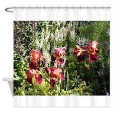 Iris flowers in bloom Shower Curtain