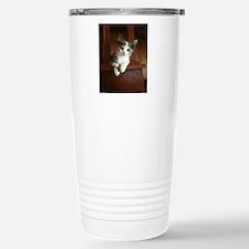 Adorable Calico Kitten Travel Mug