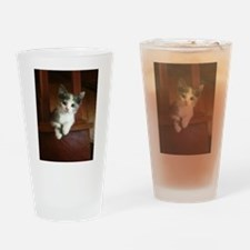 Adorable Calico Kitten Drinking Glass