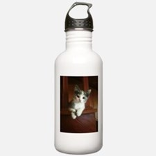 Adorable Calico Kitten Water Bottle