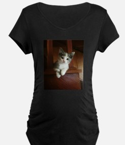 Adorable Calico Kitten Maternity T-Shirt