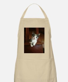 Adorable Calico Kitten Apron