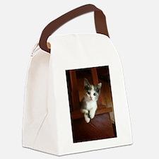 Adorable Calico Kitten Canvas Lunch Bag