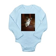Adorable Calico Kitten Body Suit