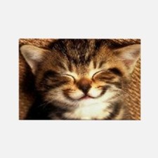 Cute Smiling cat Rectangle Magnet