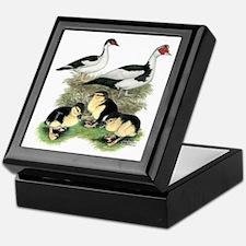 Muscovy Ducks Black Pied Keepsake Box