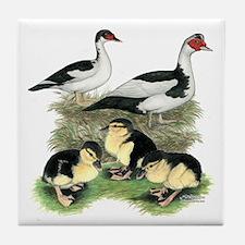Muscovy Ducks Black Pied Tile Coaster