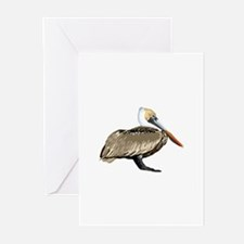 Brown Pelican Greeting Cards