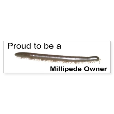 """Proud Millipede Owner"" Bumper Sticker"