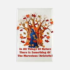 Autumn Pagan Goddess Rectangle Magnet (10 pack)