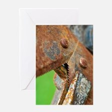 Sharp Rusty Teeth Card Greeting Cards
