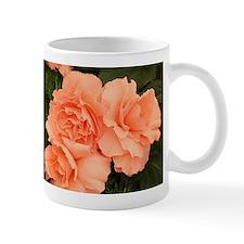 Apricot begonia flowers Mugs