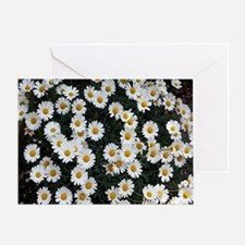 Unique Yellow daisy Greeting Card