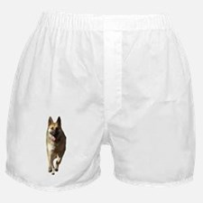 German Shepherd Running Boxer Shorts