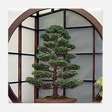 Cool Bonsai Tile Coaster