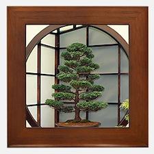 Funny Bonsai tree Framed Tile