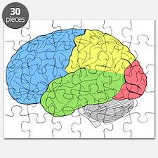 Cute Brain anatomy Puzzle