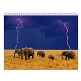 Elephant Calendars