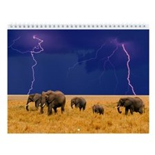 Elephants Wall Calendar