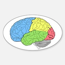 Primary Brain Decal