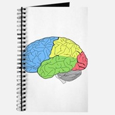Primary Brain Journal
