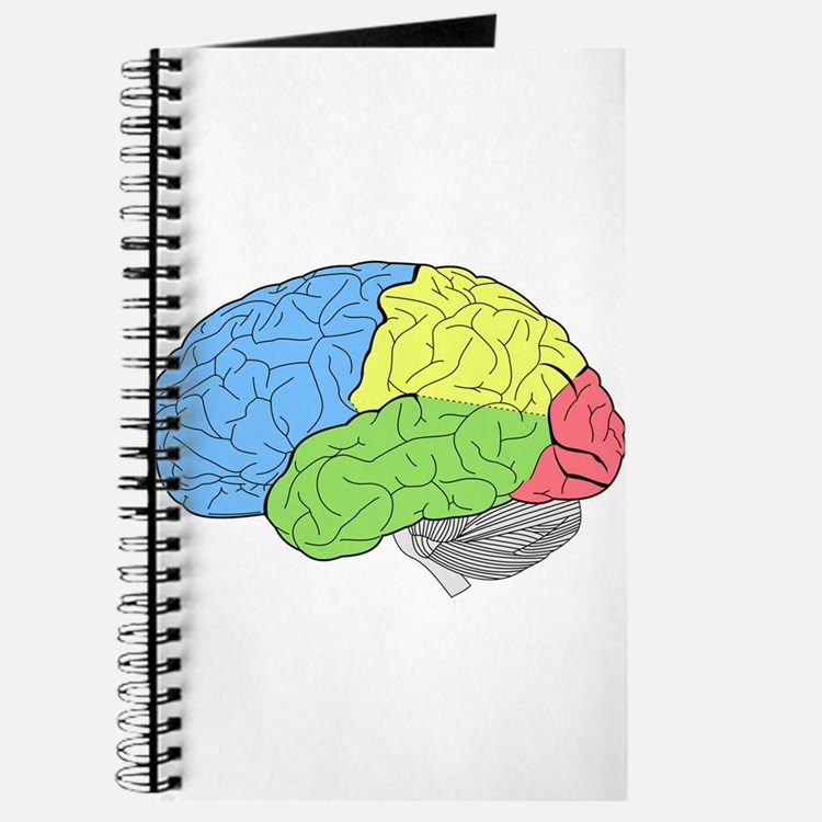 Primary Brain Journal
