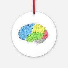 Primary Brain Round Ornament