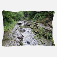 forest river scenery Pillow Case