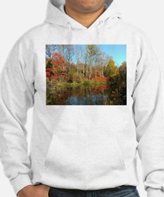 autumn colors Hoodie