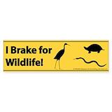 I brake for wildlife Stickers