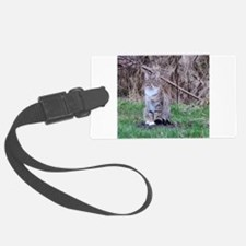 a female gray house cat sitting Luggage Tag