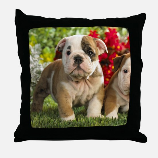 Cute English Bulldog Puppy Throw Pillow