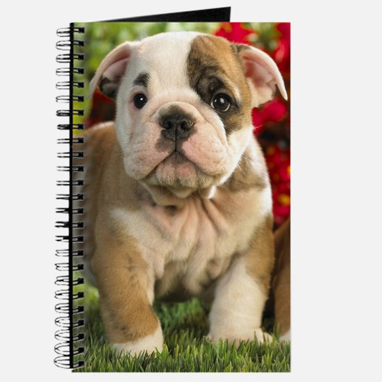 Cute English Bulldog Puppy Journal
