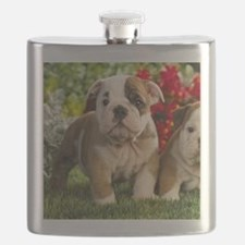 Cute English Bulldog Puppy Flask