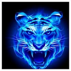 Blue Fire Tiger Face Wall Art Poster
