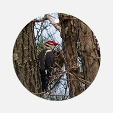 Male Pileated Woodpecker Round Ornament
