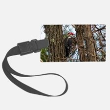 Male Pileated Woodpecker Luggage Tag