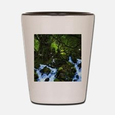 Forest Dreams Shot Glass