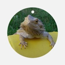Cute Bearded dragon Round Ornament