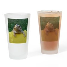 Cute Beardie Drinking Glass