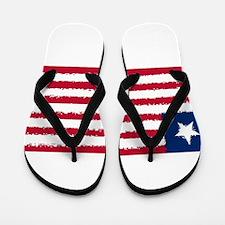 8 bit flag of Liberia Flip Flops
