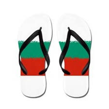 Bulgaria in 8 bit Flip Flops