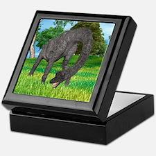 Dinosaur Brachiosaurus Keepsake Box