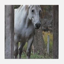 Unique White horse Tile Coaster